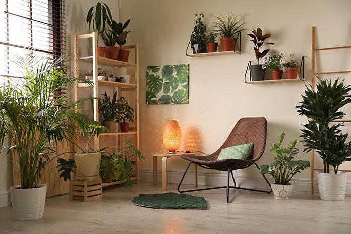 Zielone ściany w biurze - dlaczego warto założyć ogród wertykalny w firmie