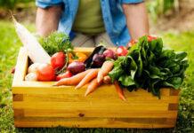 Benefit dla pracowników w postaci owoców i warzyw